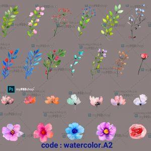 دانلود رایگان 127 طرح آبرنگی گلها watercolor.A2